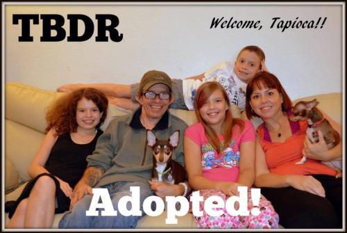 Adopted Tapioca
