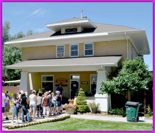 Lavender Farm Day 032