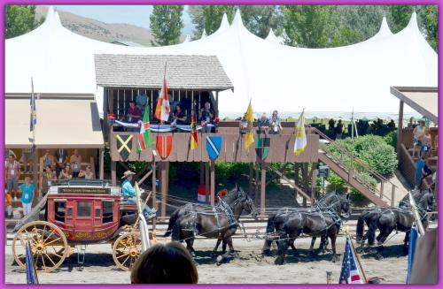 Lavender Farm Day 083