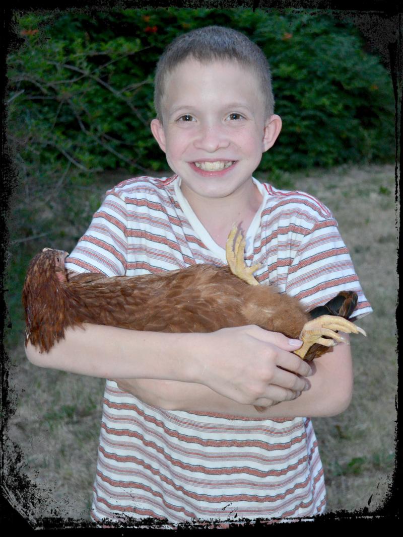 Chicken Coop 007