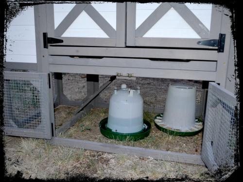Chicken Coop 009