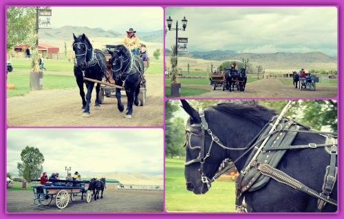 Utah YL Fall Festival Trip 035