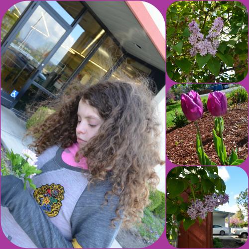 Flower Walk