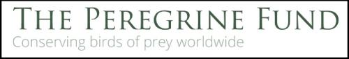 PeregrineFund Logo