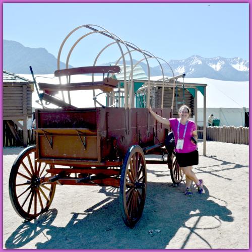 Lavender Farm Day 017