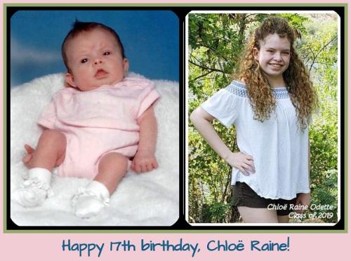 09072018 Chloe's 17th birthday 01