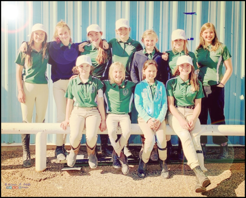 Quiz - Owyhee Pony Club