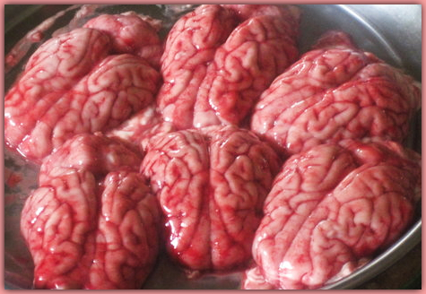 5657545-Monkey_brains_for_sale_at_Market-0