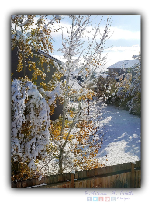 Snow in Mountain Home 10262019